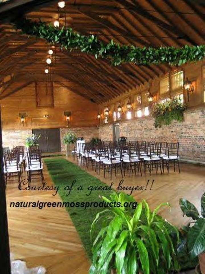 natural green moss products
