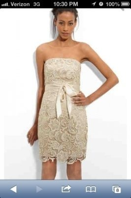 Adrianna Papell Champagne Lace Dress