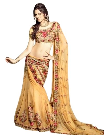 Indian embroidered lehenga