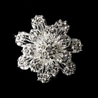Silver And Crystal Brooch Free
