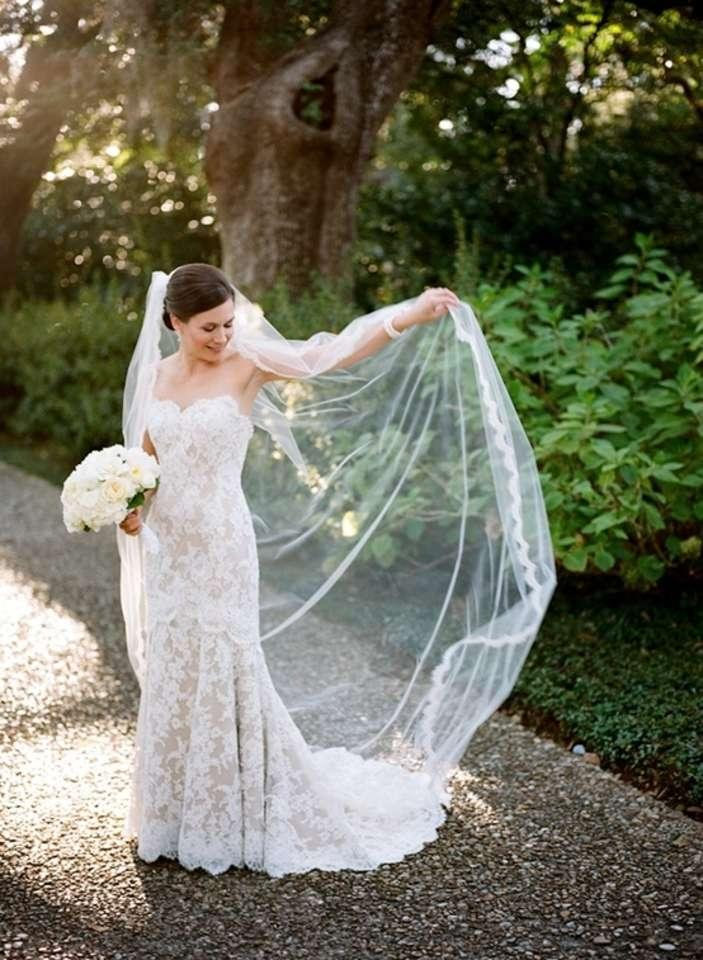 Lace Wedding Dress And Veil : Eye lash lace trim edge cathedral wedding veil tradesy