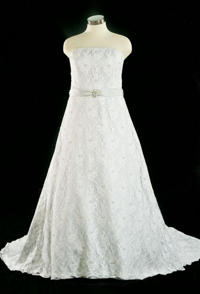 Copy link to clipboard for Size 24 dresses for wedding