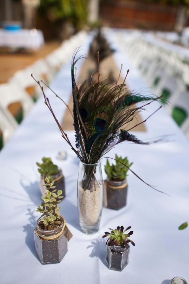 Peacock feather birch centerpieces tradesy weddings