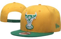 New Era NWT Chicago Bulls New Era Yellow/Green 9Fifty Adjustable Snapback Cap