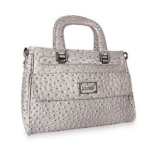 Miadora Corinne Satchel in Gray