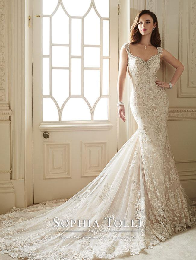 Lace and Sexy Wedding Dresses