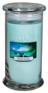 The Candle Factory The Candle Factory Large 15-ounce Jar Crackling Candle, Tropical Paradise