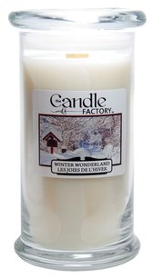 The Candle Factory The Candle Factory Large 15-ounce Jar Crackling Candle, Winter Wonderland